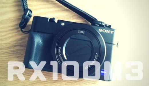 【RX100M3レビュー】女子の旅行カメラに最適!2年使い倒した感想