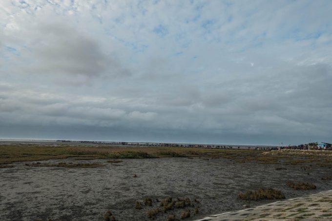 高美湿地(高美野生動物保護区)